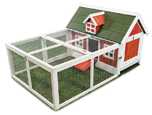 Chicken Barns